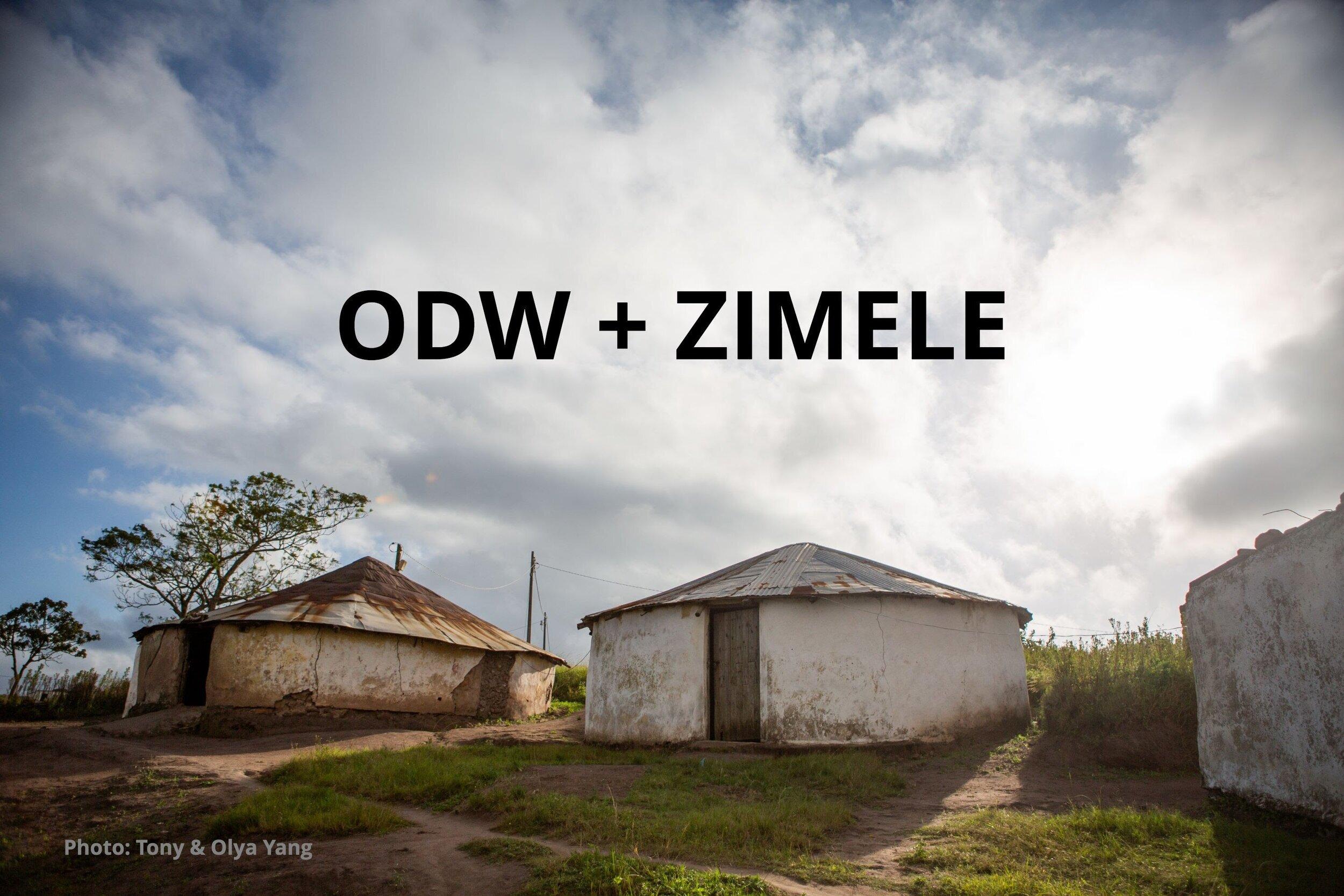 Zimele+and+ODW.jpg