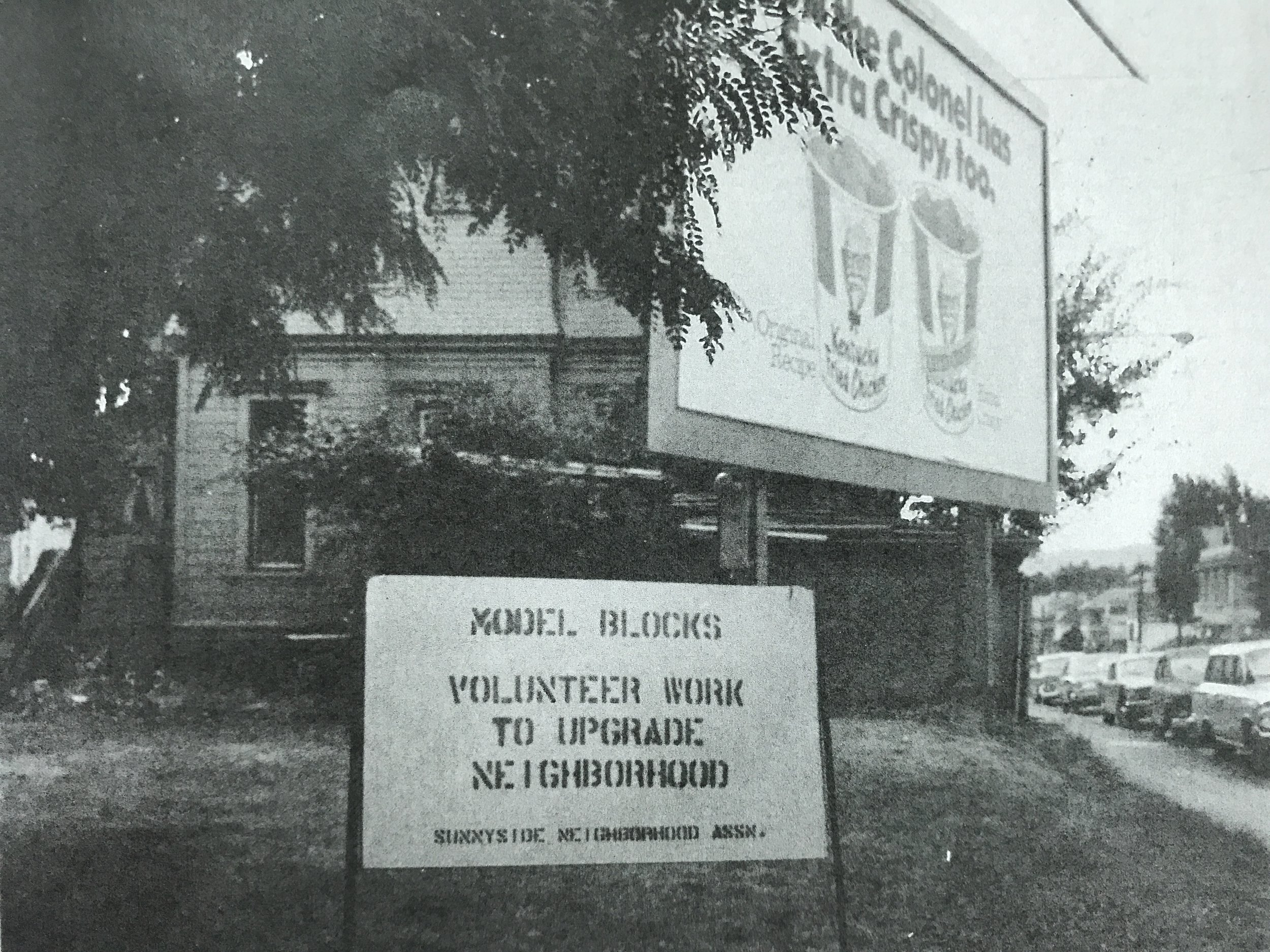 pied cow - Sept 1973.JPG