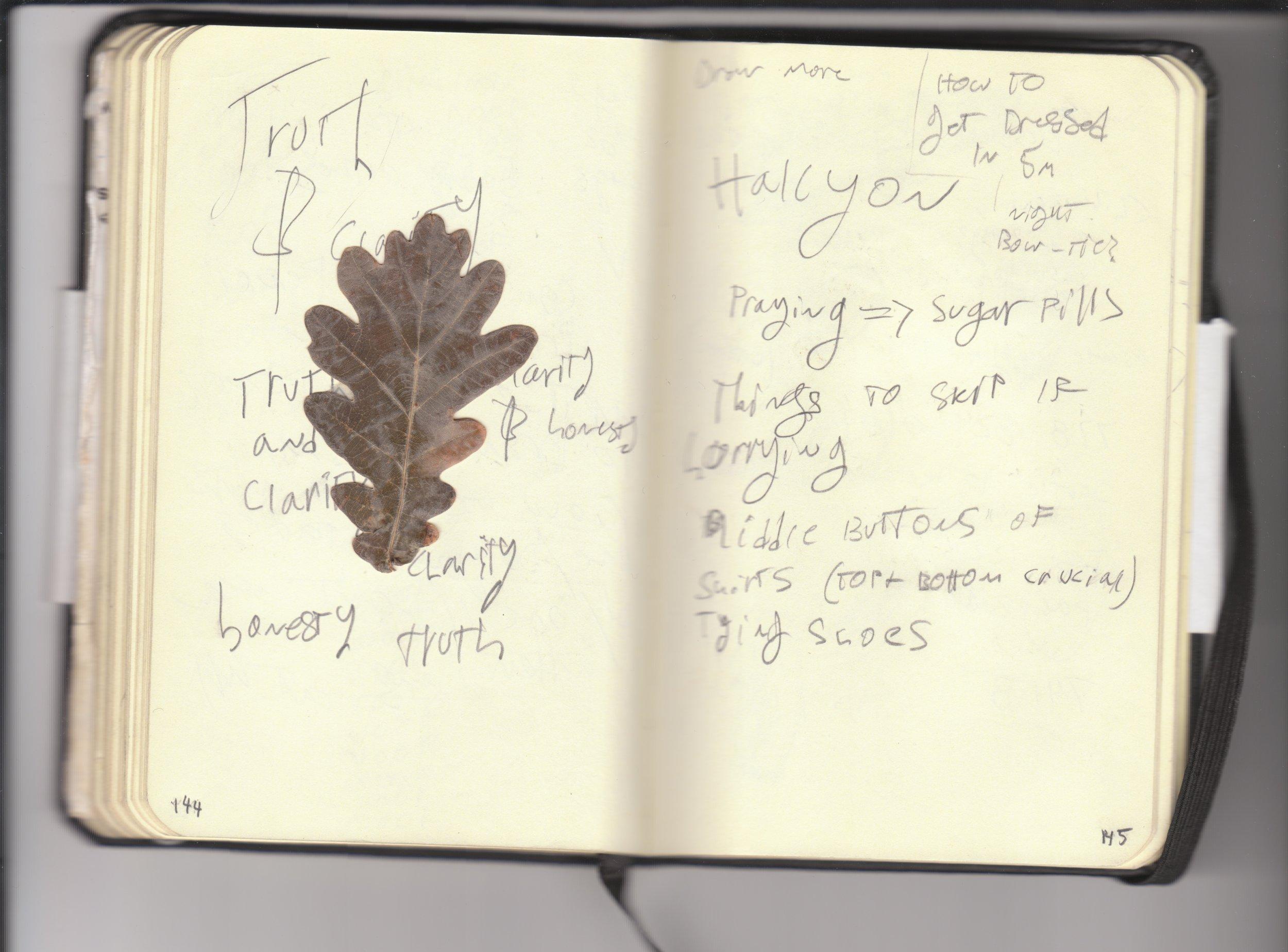 notebook4_Page_078.jpg