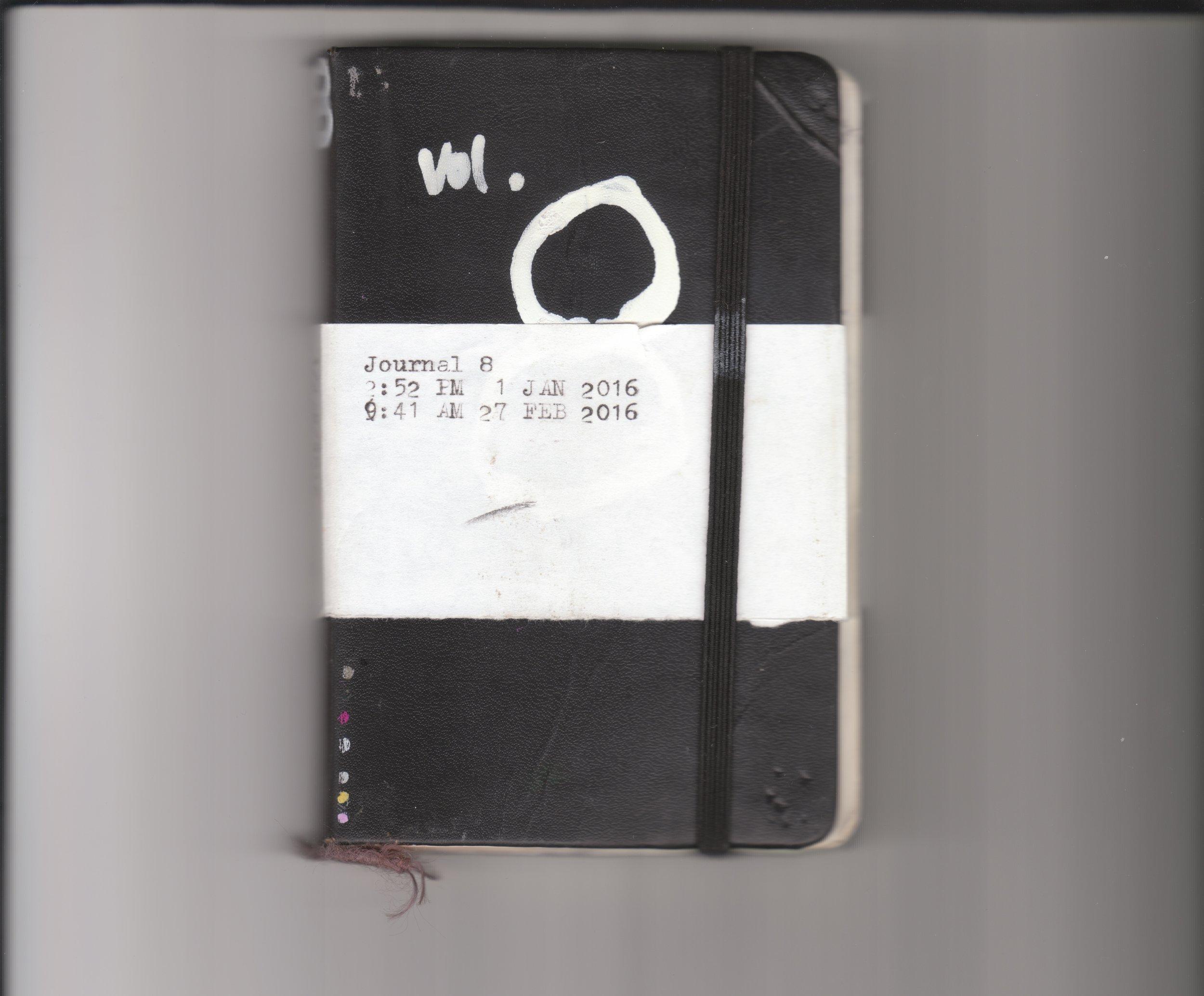 Journal 8