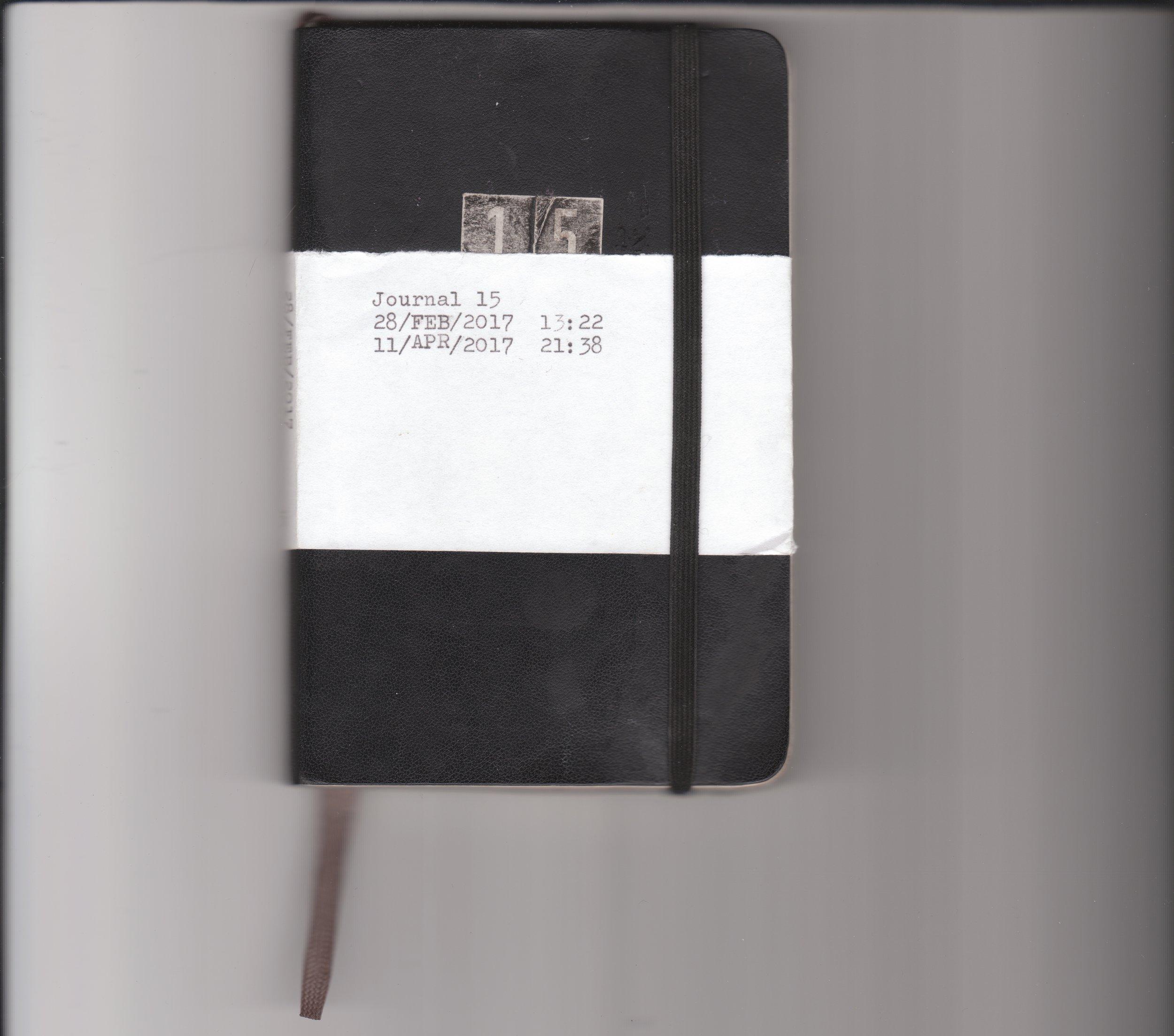 Journal 15