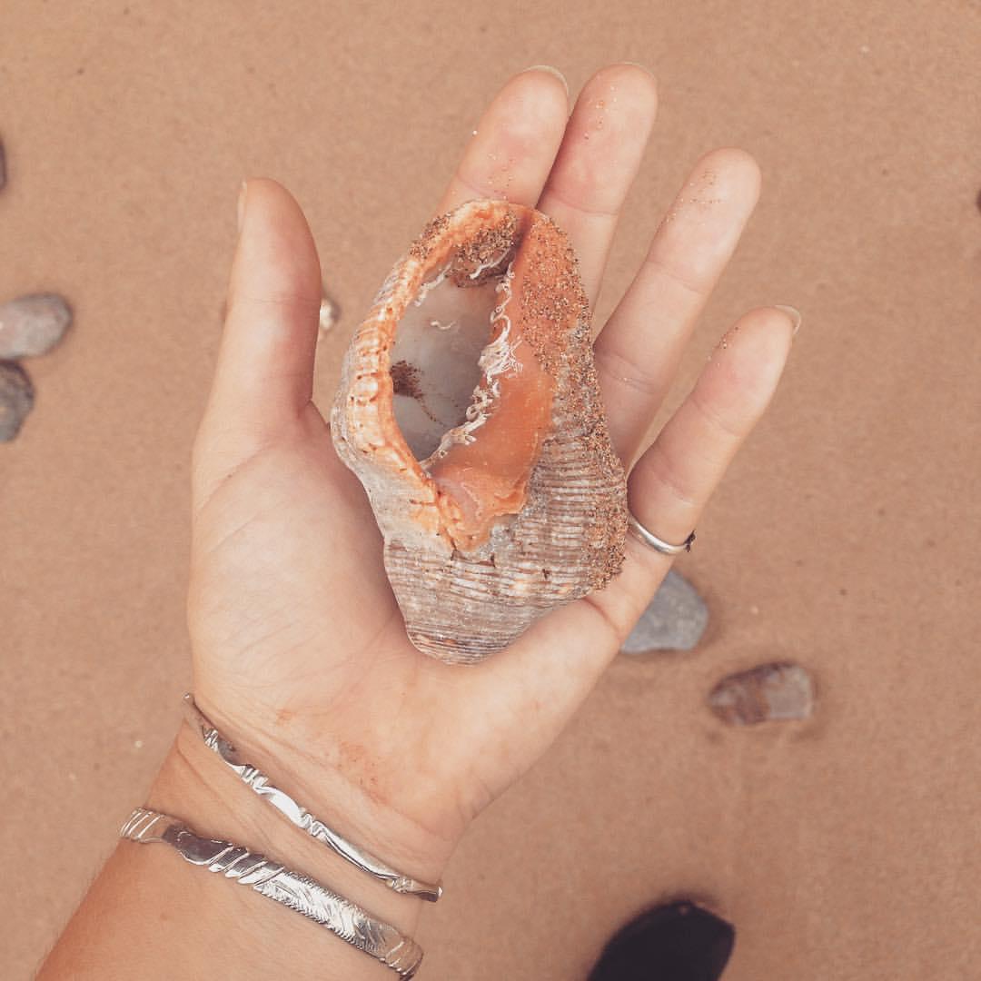 Moroccan #SeaTreasures 🐚🌊🌞