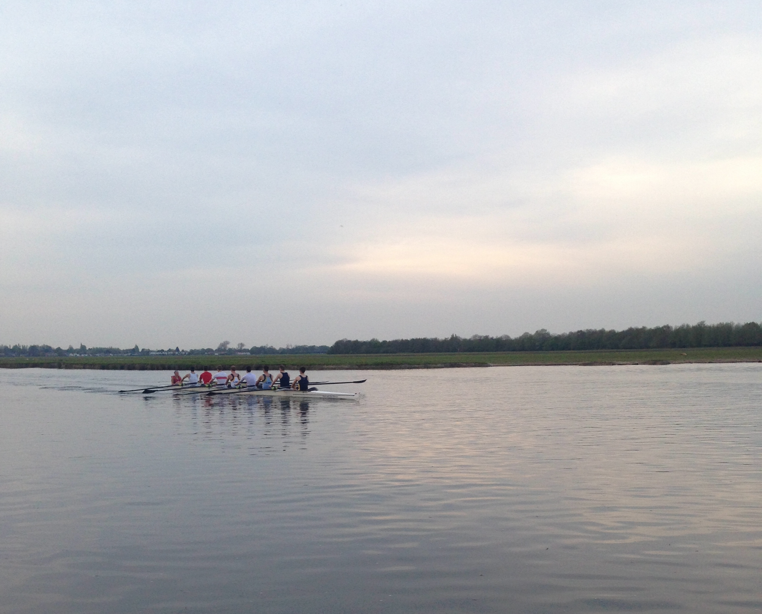Rowers on the river at Port Meadow