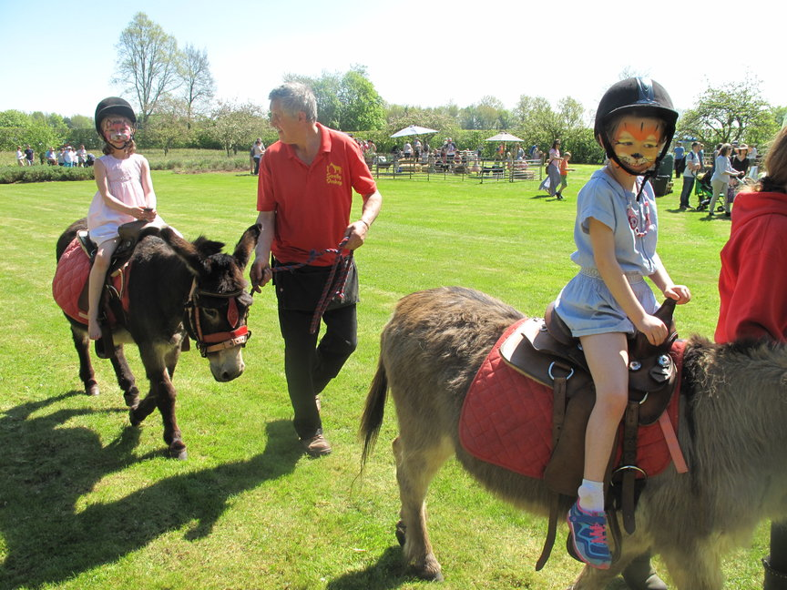 Children enjoying rides on Barney and Fernando from Scratby Donkeys at the Stody 'Kids for Kids' Family Fun Day on Sunday 6th May 2018