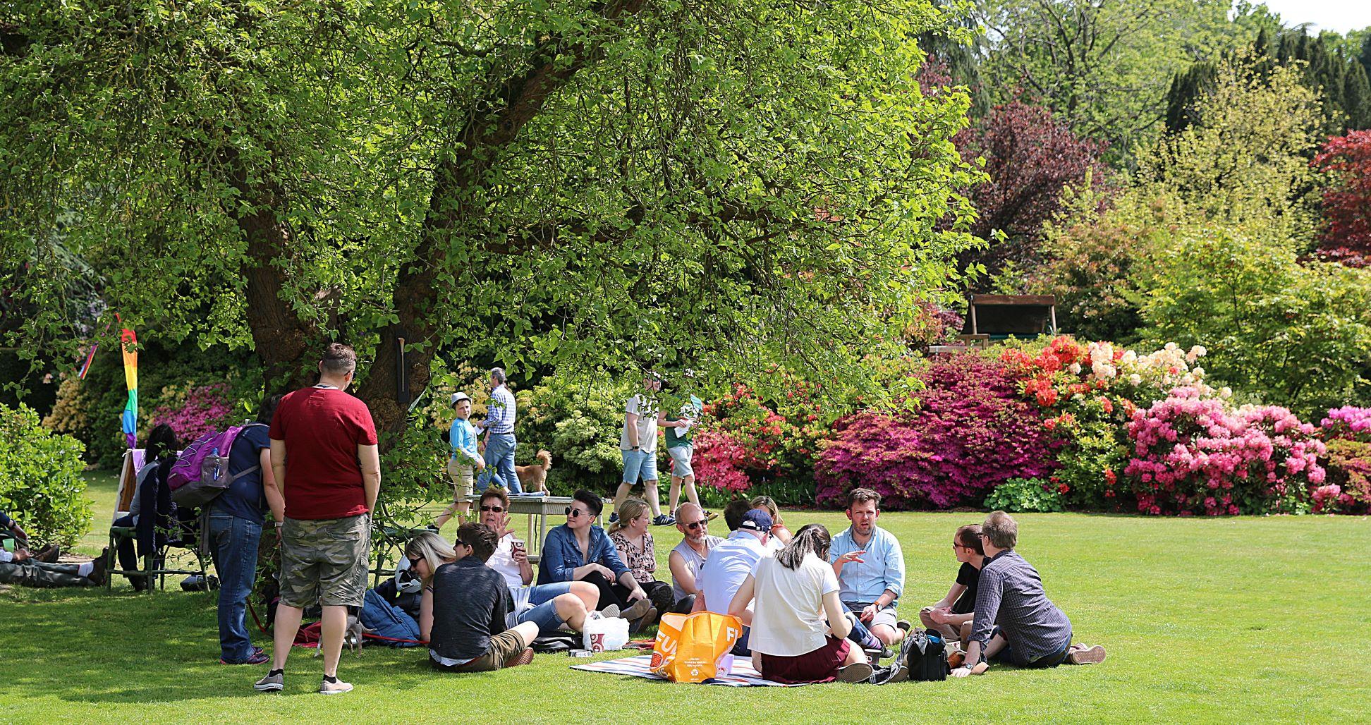 Alan Palmer_picnic on lawn_low res.jpg