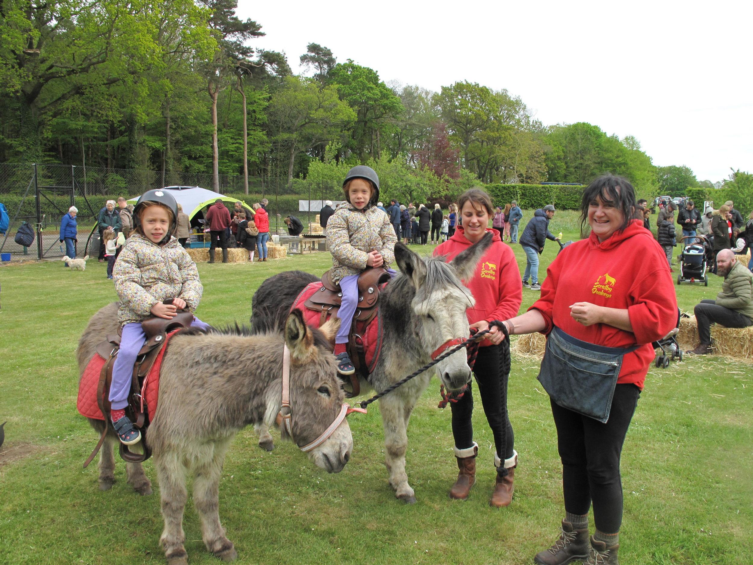Donkey rides.JPG