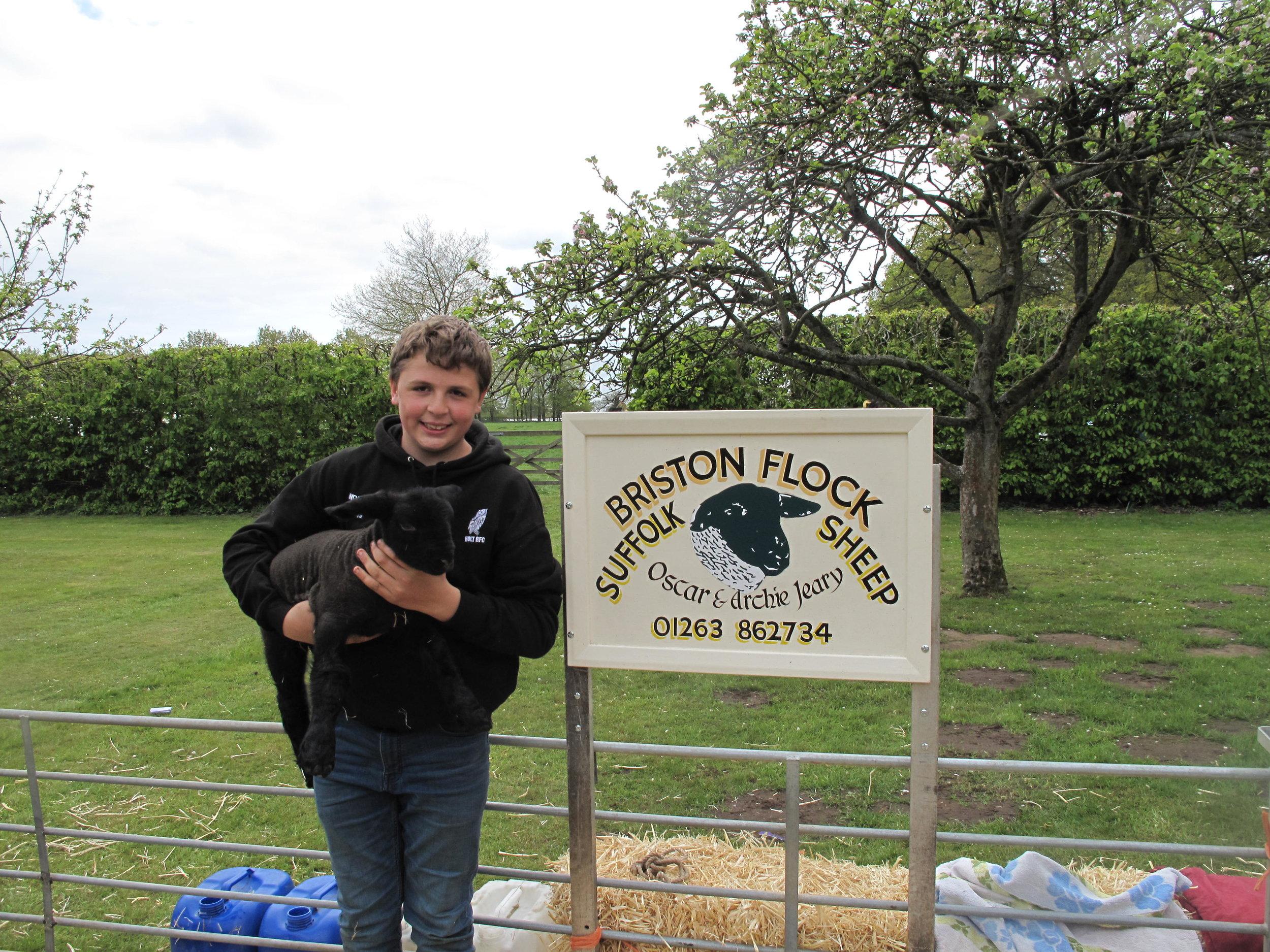 with Sheep.JPG