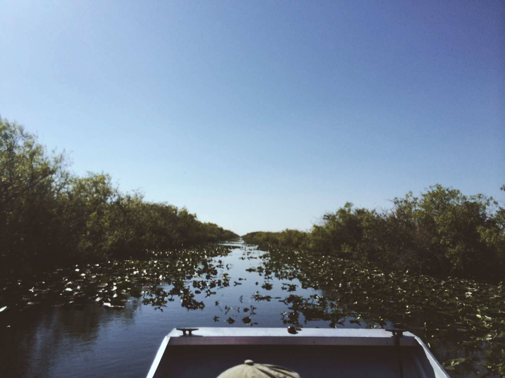Gator ride in the Everglades.