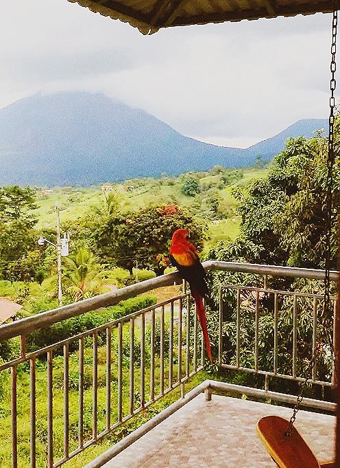 Costa Rica airbnb