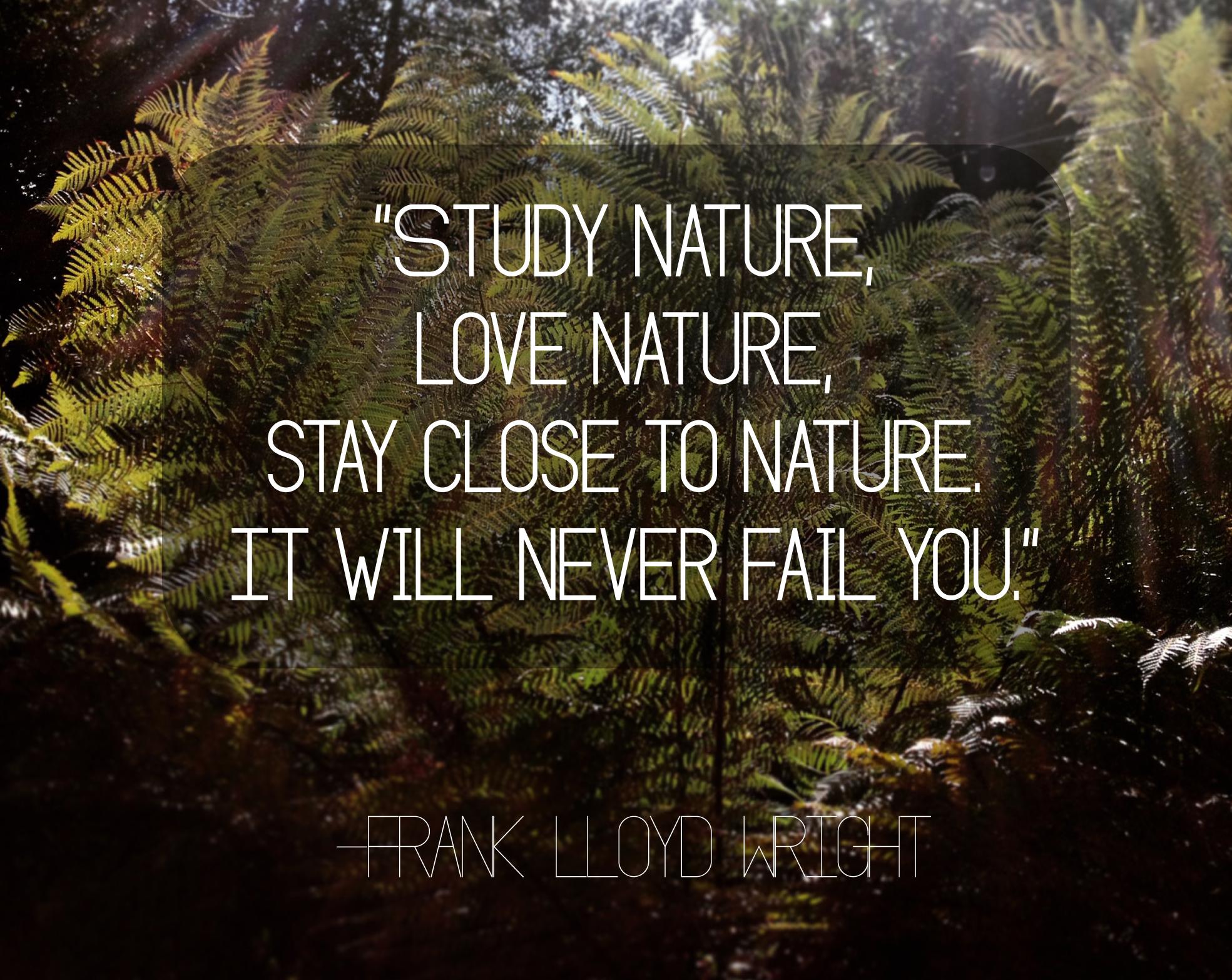 studynature.jpg