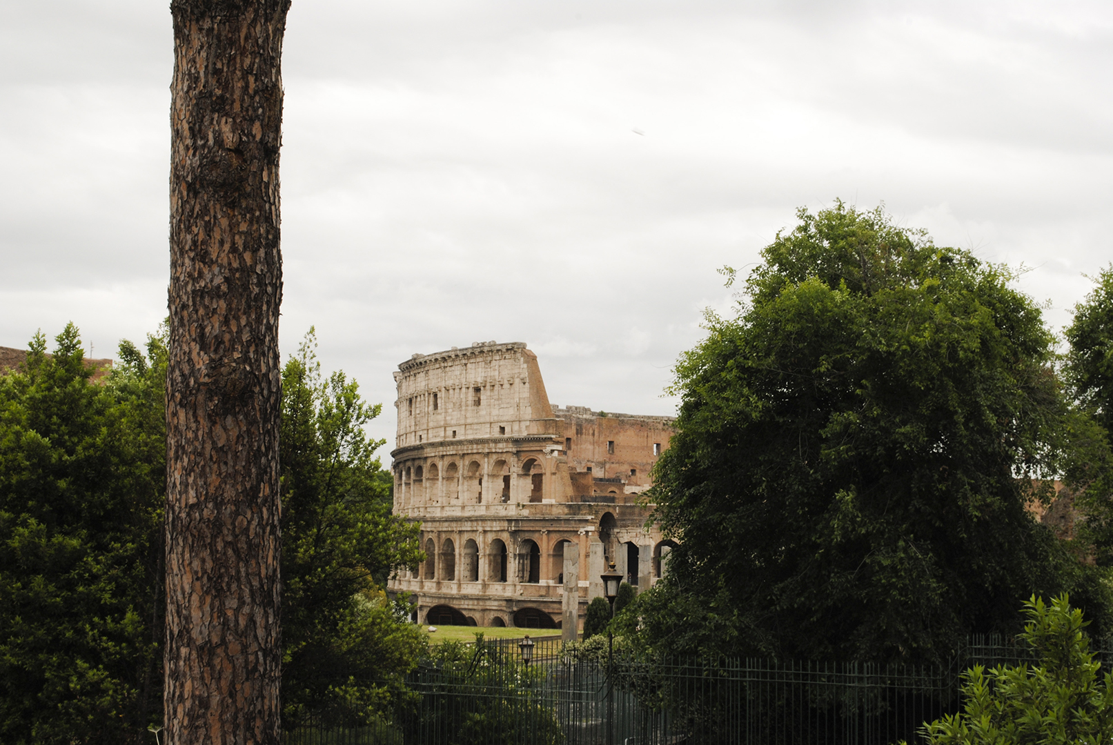 Italy ? Rome in a Day | Sea of Atlas