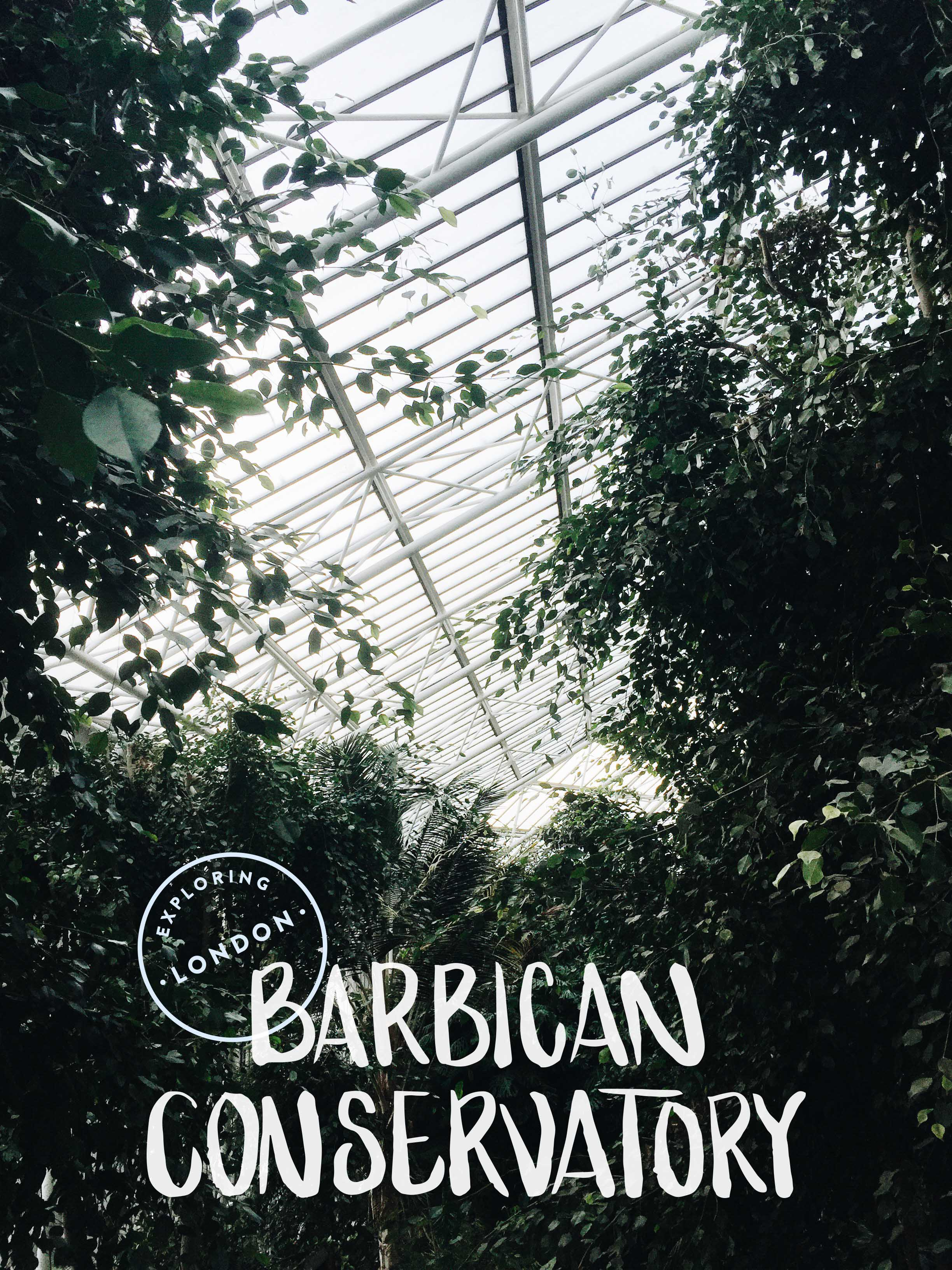 Exploring London · The Barbican Conservatory | Sea of Atlas