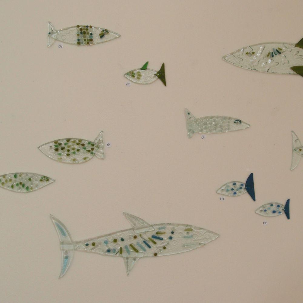 fish shoal.jpg