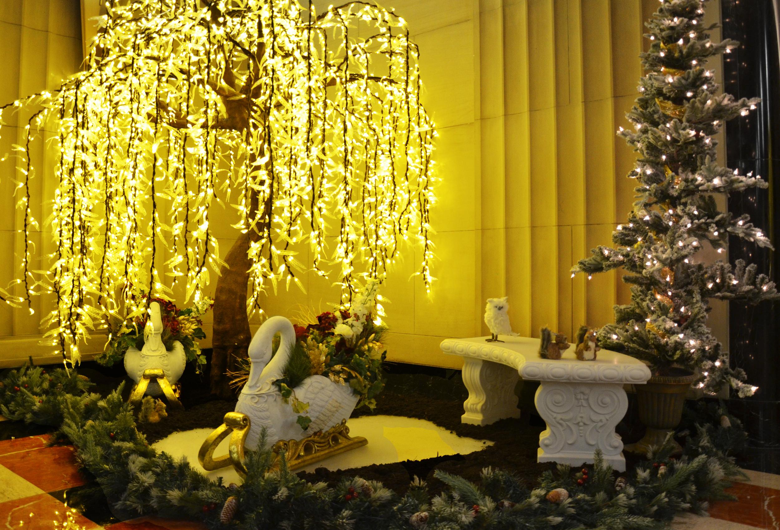 Harding Botanicals. Holiday Design. 501 Boylston. Holiday Environment