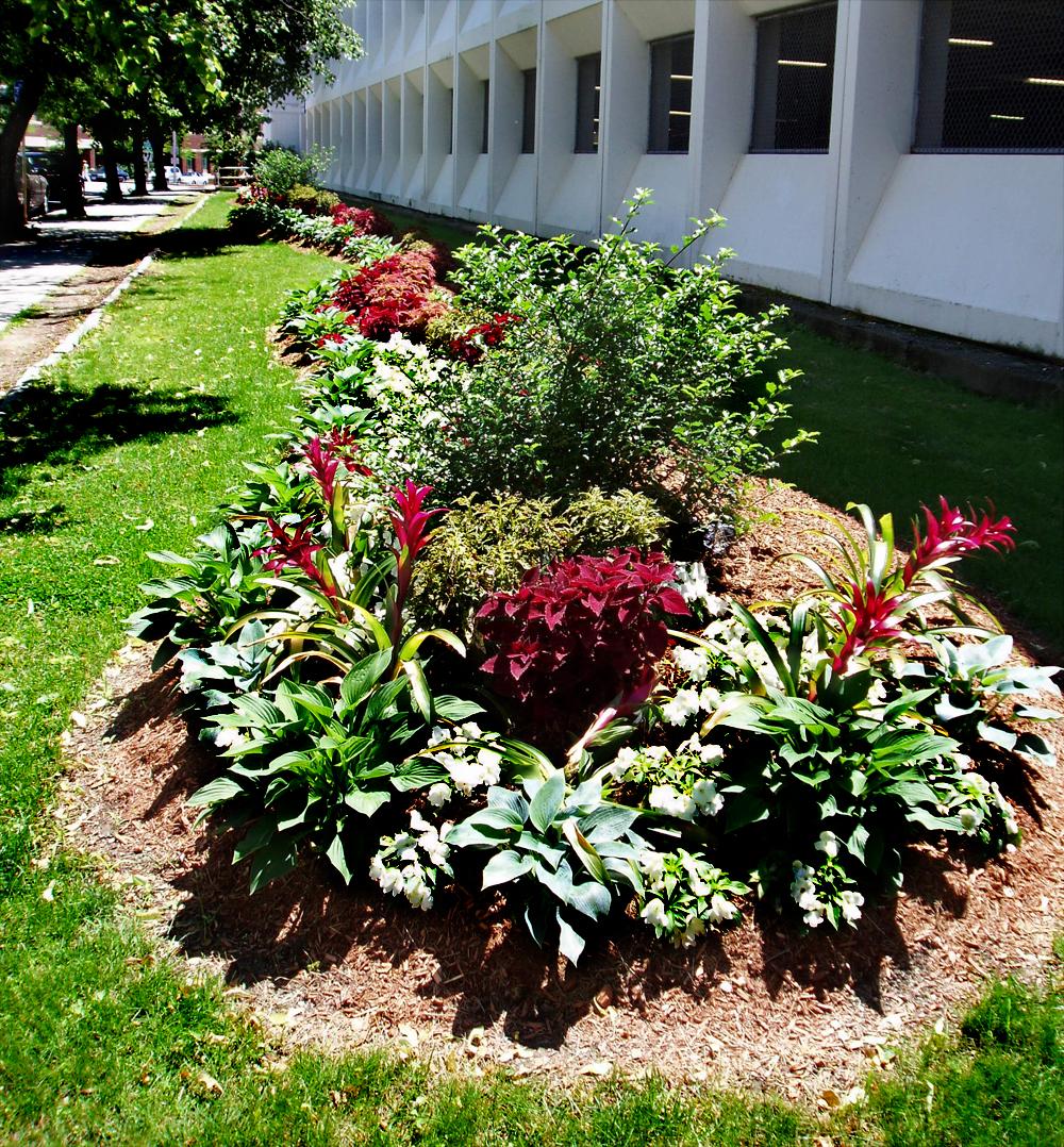 Harding Botanicals. Exterior Design. Boston