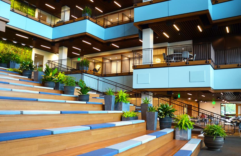 Harding Botanicals. TripAdvisor Headquarters. Interior Plantscapes