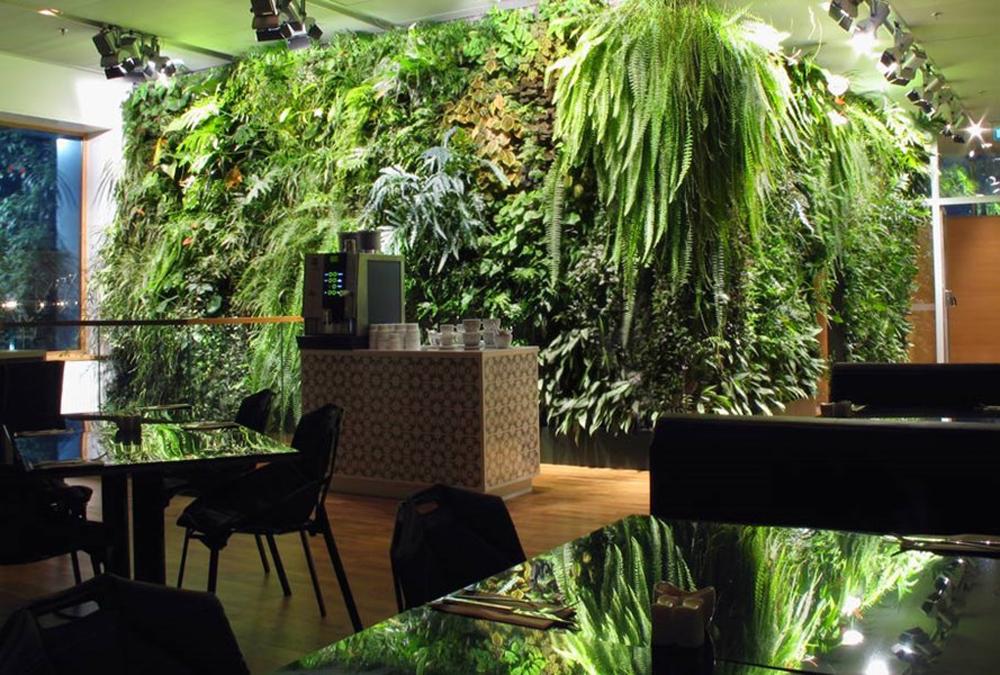 Living Walls Vertical Garden Design Harding Botanicals