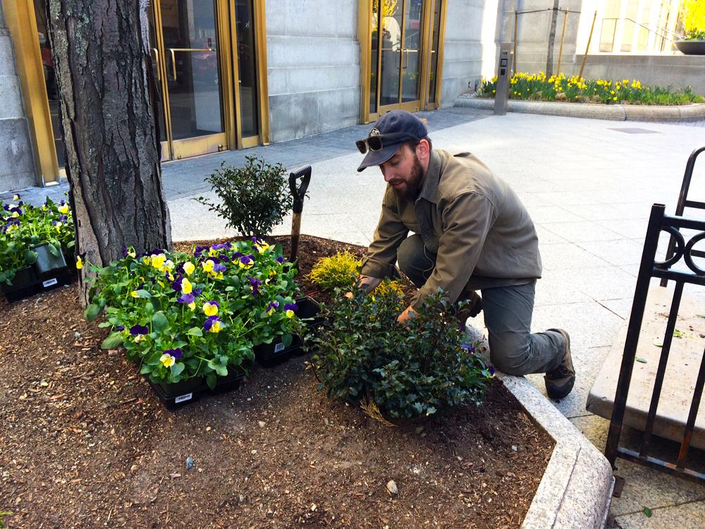 501 Boylston Spring Install