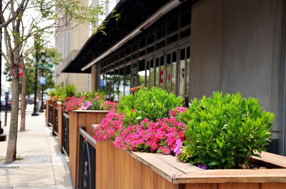 Harding Botanicals_Exterior Design_Container Gardens 5