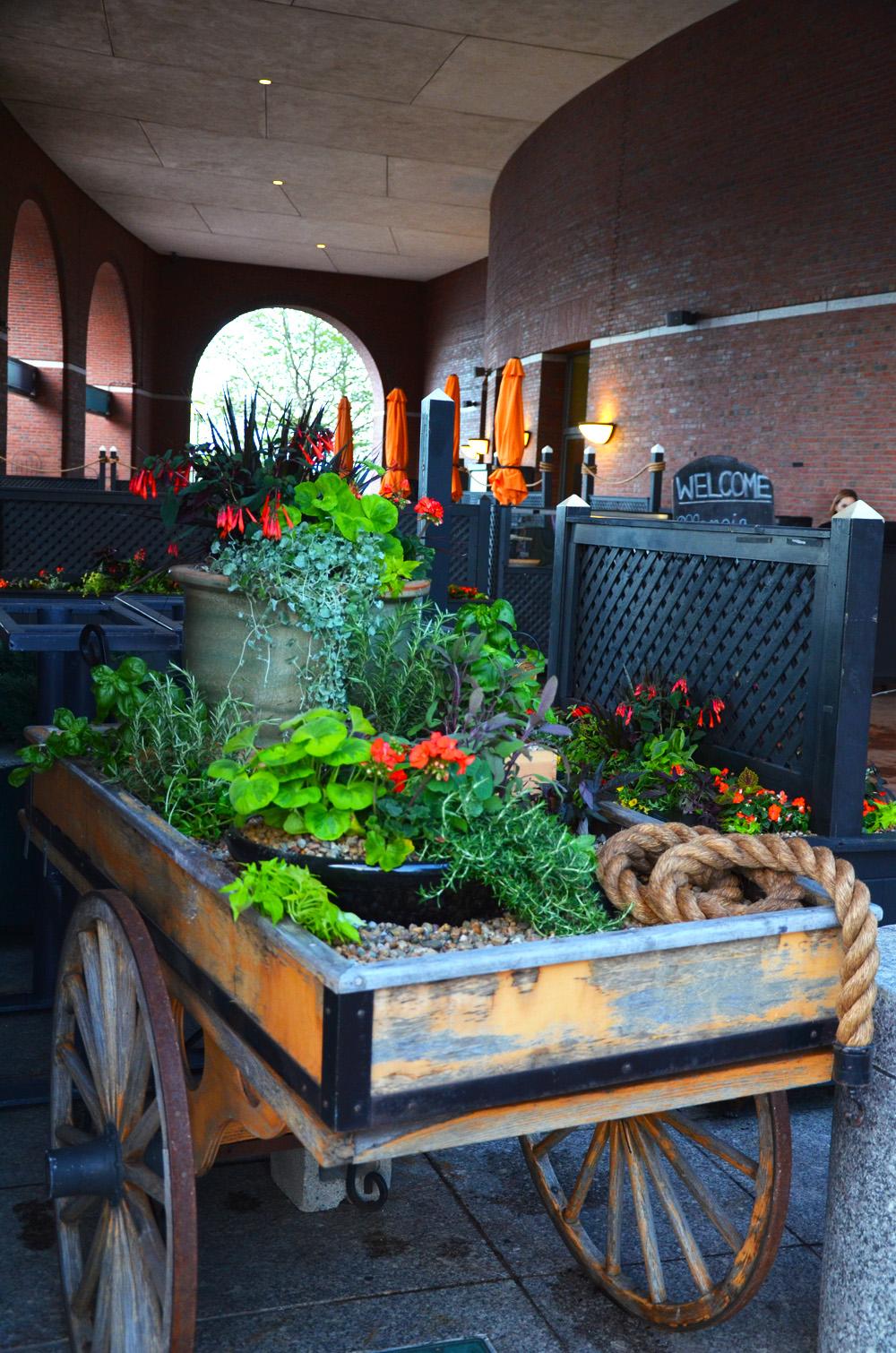Harding Botanicals Herb Garden