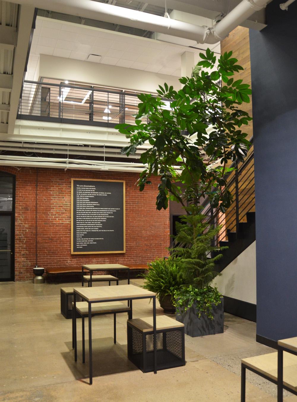 Harding Botanicals Boston Interior Plants