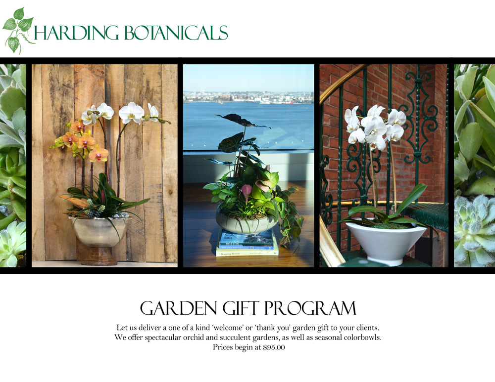 Harding Botanicals_Plant gift program