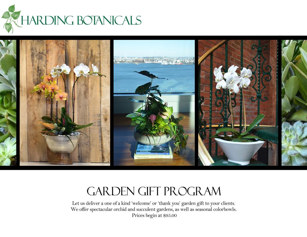 Harding Botanicals_Plant gift program