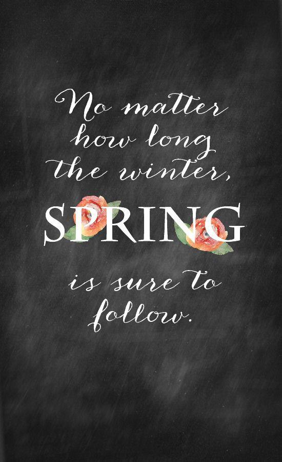 Harding Botanicals_Spring is sure to follow.jpg