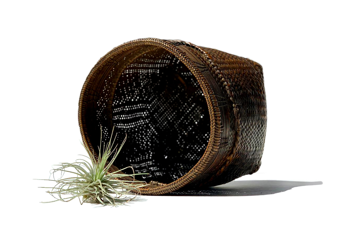 Finely Woven Medium Collecting Basket