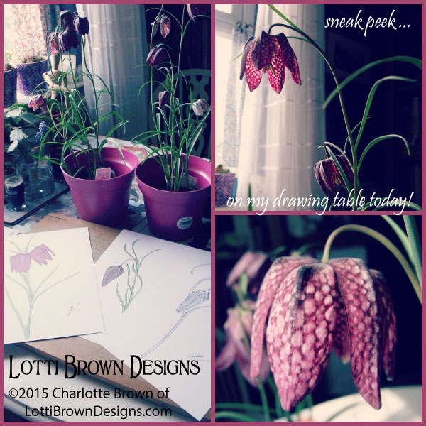 Feeling inspired by these gorgeous patterned petals - fritillaries