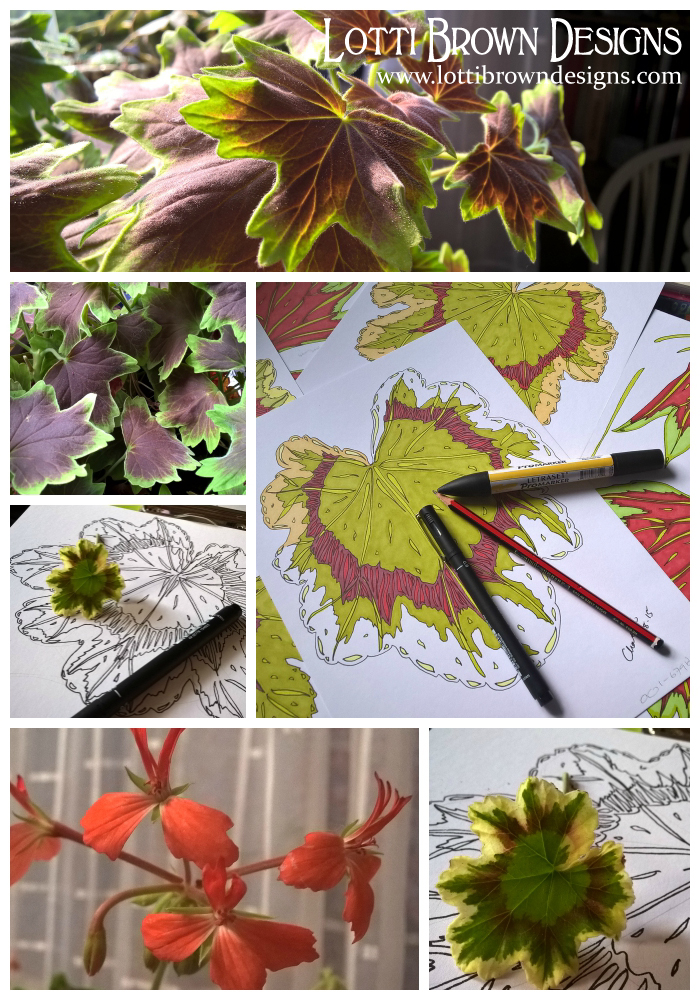 Some of my geranium leaf drawings, the ones that ended up in this design are the bright red ones, seen slightly beneath the pile of drawings in the large image.