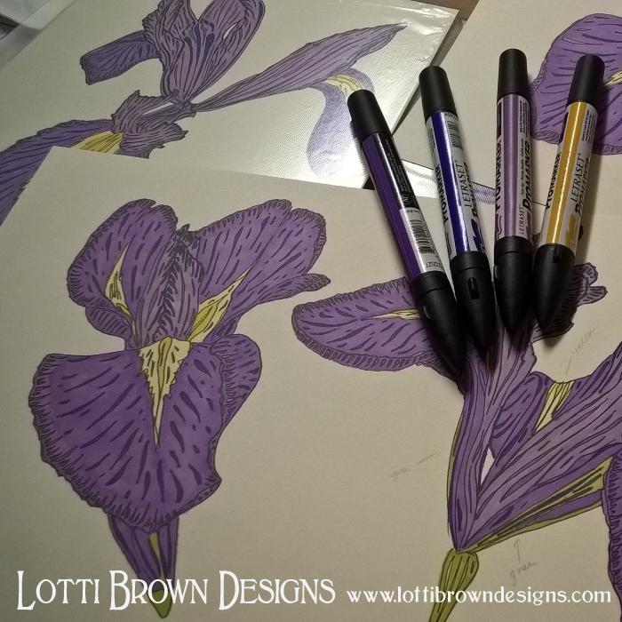 Iris drawings