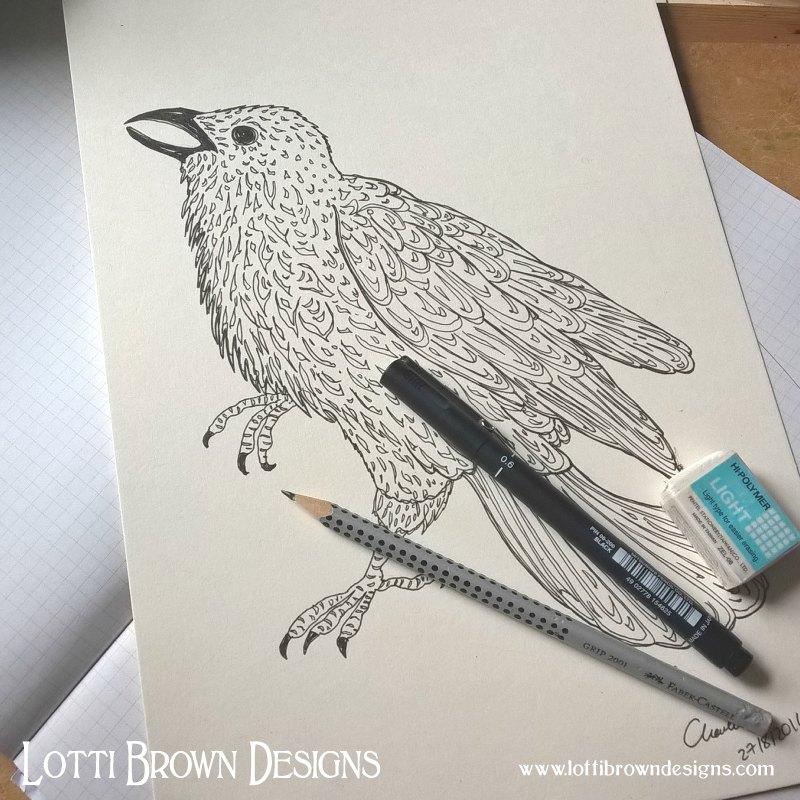 Starting my raven drawing