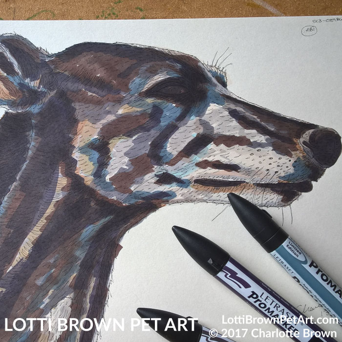 Greyhound drawing - click image to see what it became