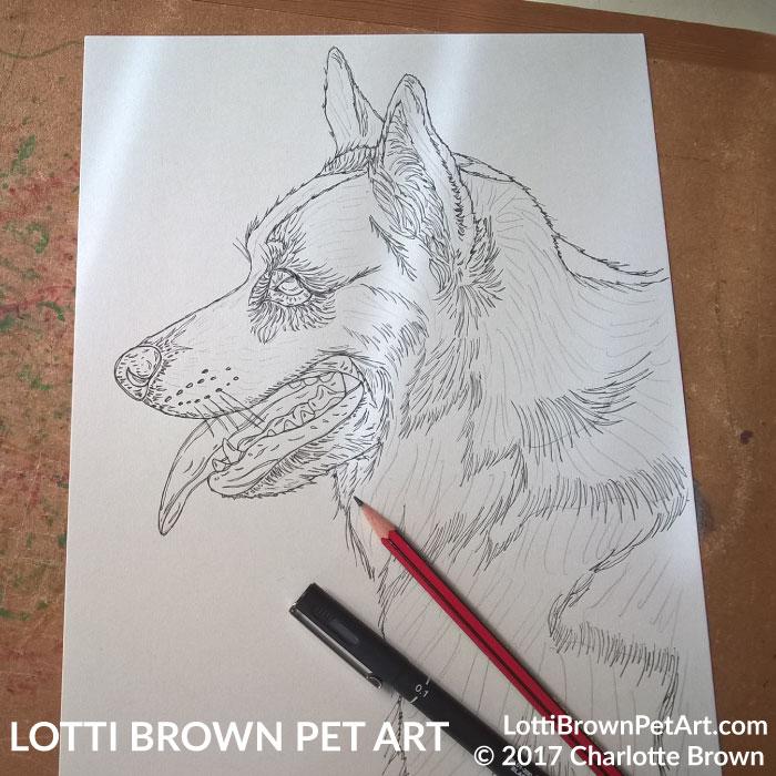Starting the corgi drawing