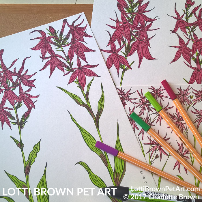 Adding colour to the flowers