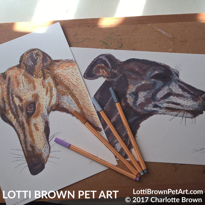 The two greyhound drawings