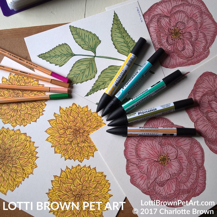 Flower drawings for the artwork