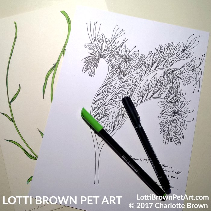 Drawing flowers and foliage
