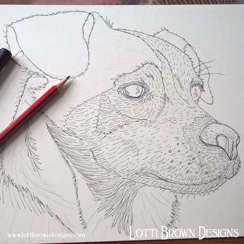 Starting the drawing