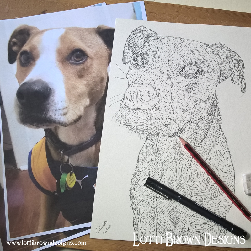 Detailed outline drawing