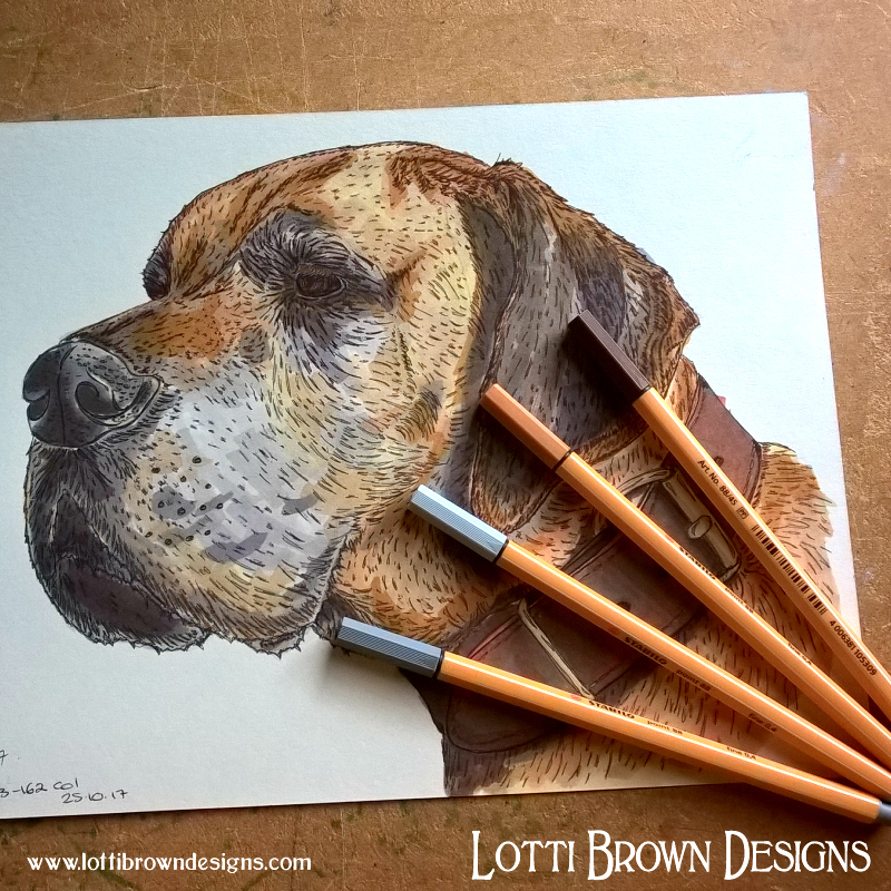 My original preparatory sketch of your pet will also be sent to you as part of your pet portrait package