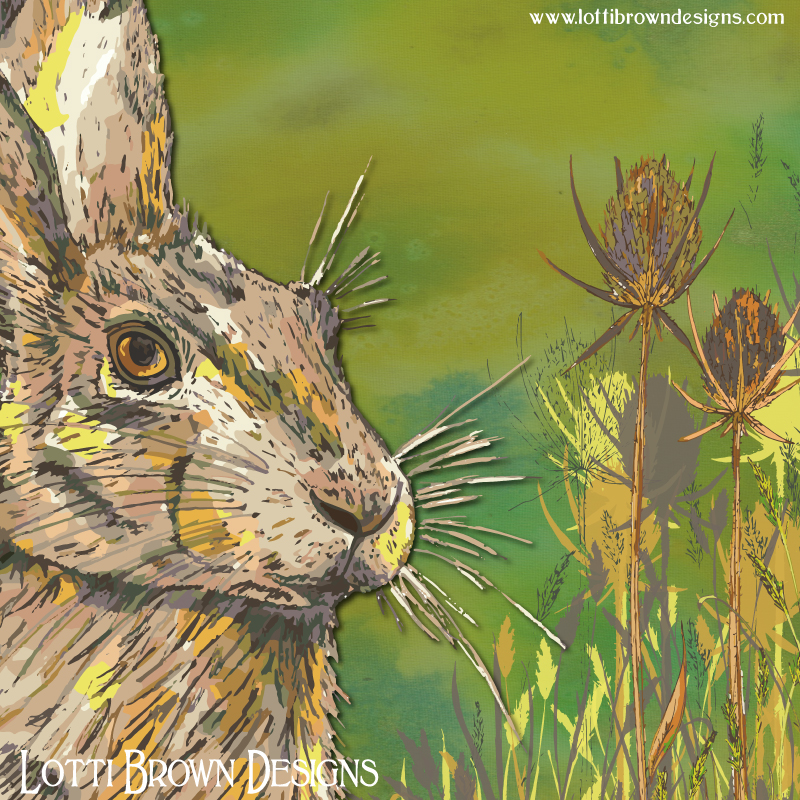 Detail from the hare print