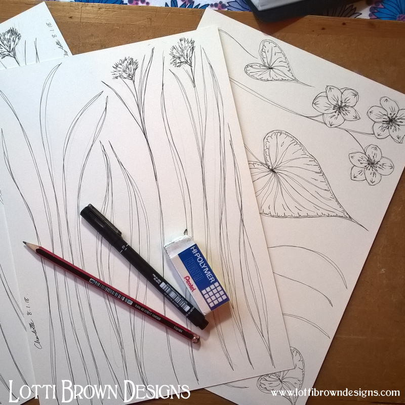 Drawing the flowers and foliage