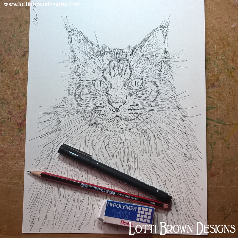 Starting my cat drawing