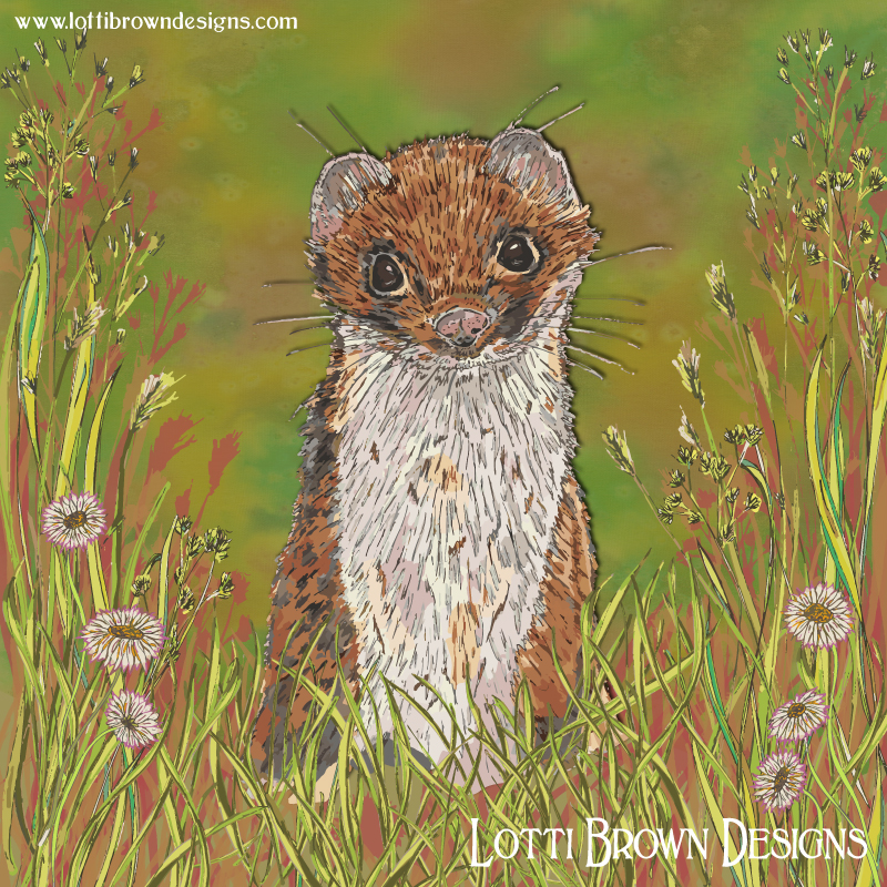 Summer Stoat art - click image to see behind the scenes