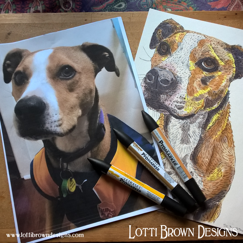 Drawing a custom pet portrait from photo - click to find out more about the process