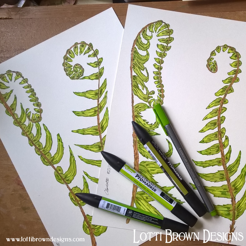 Adding colour to my fern drawings