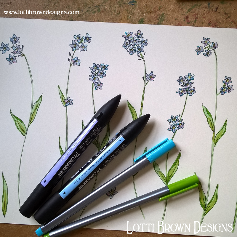 Colouring forget-me-nots
