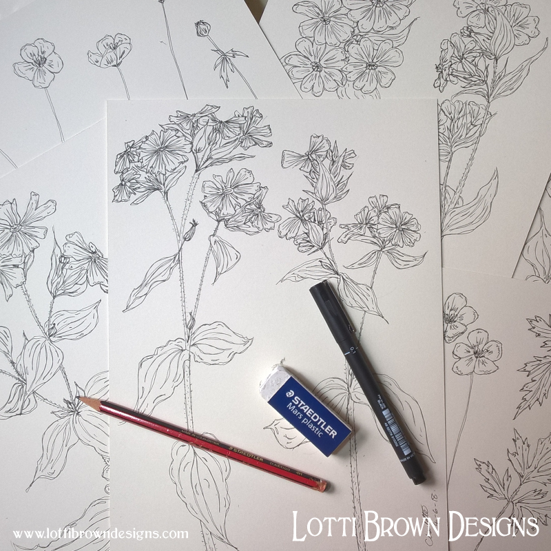 Starting to draw the flowers